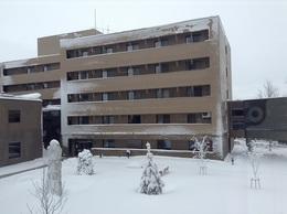 雪がついたセンター.JPG