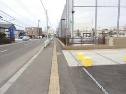 3月15日雪解け後02.JPG
