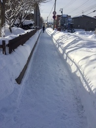 センター前の歩道.JPG