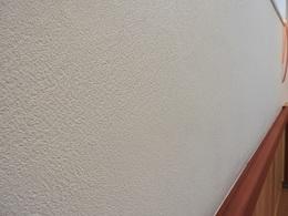下駄箱プロジェクト06ホタテ漆喰の壁.JPG