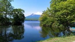 春の大沼公園.jpg
