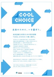 cool choice02.jpg
