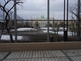 3月15日雪解け後のグラウンド.jpg