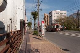 春の街歩き.jpg
