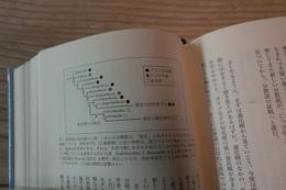 霊長類の進化樹.jpg